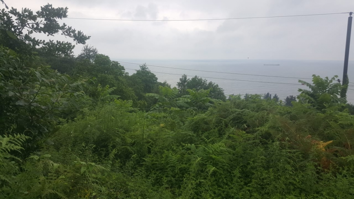 land in Makhinjauri