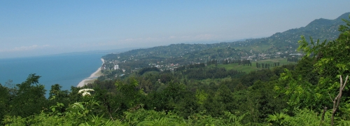Land for sale in Chakvi, 2200 m2.